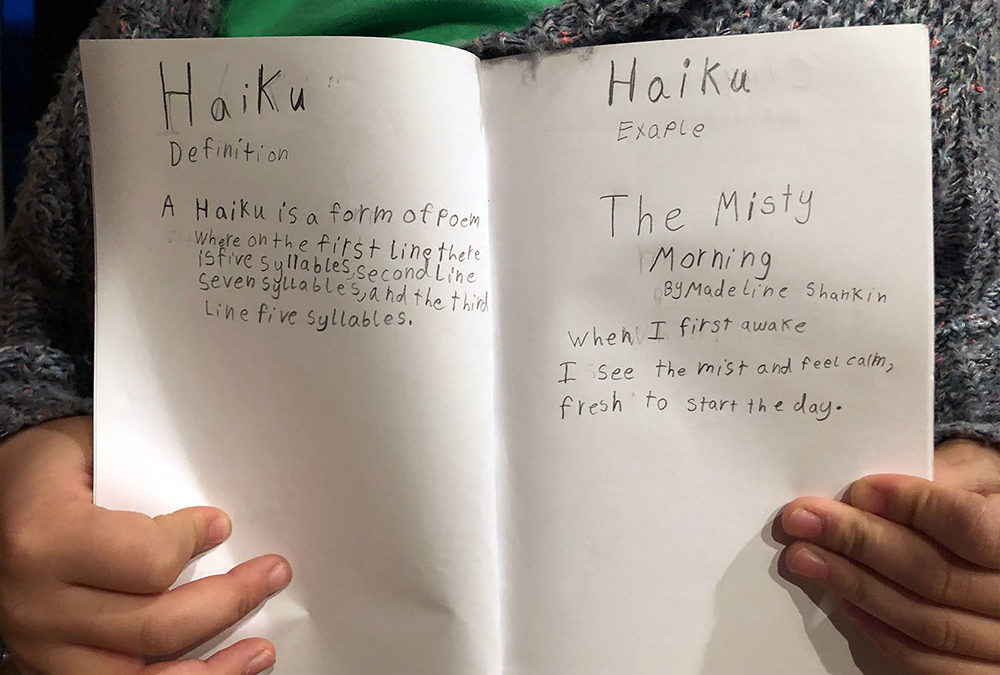 Poetry Snack Book